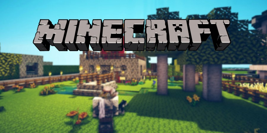 Autistic Teen Livestreams 12 Hour Minecraft Marathon